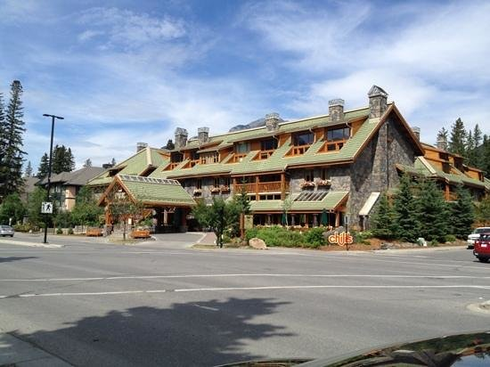 fox hotel and suites banff reviews